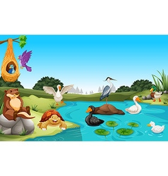 Many animals living by the pond vector