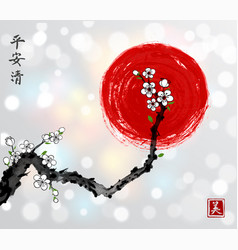 sakura cherry branch in white blossom and red sun vector image