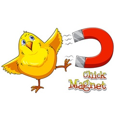 Chick magnet vector image