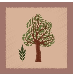 Flat shading style plant fraxinus vector