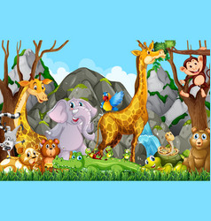 Many cute animals in forest vector