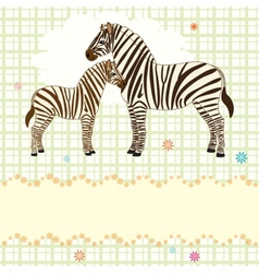 Nice card with two zebras vector
