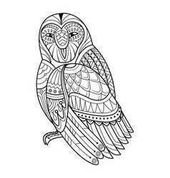 Owl hand drawn for coloring book vector