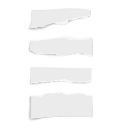 Set paper different tears wisps placed on white vector