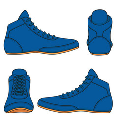 set with blue wrestling shoes vector image