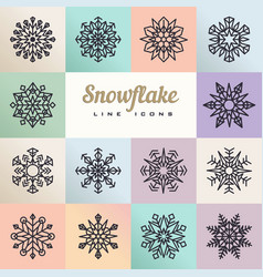 snowflakes various type and squares vector image