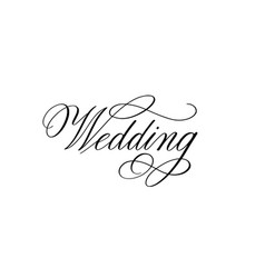 wedding retro pen calligraphy romantic ink design vector image