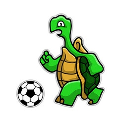 Turtle Soccer vector image