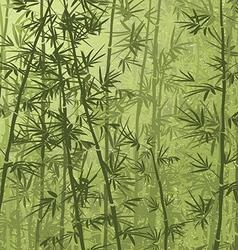bamboo05 vector image vector image
