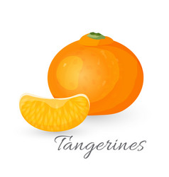 tangerine tropical fruit isolated on white vector image vector image