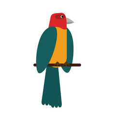Beautiful parrot bird vector