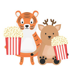 Cute tiger and reindeer with pop corn childish vector