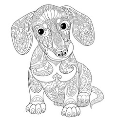 dachshund dog adult coloring page vector image