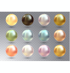 realistic varicoloured pearls set on vector image