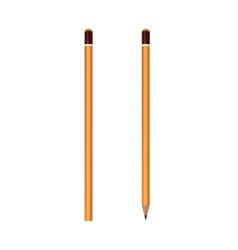 yellow wooden pencils classic yellow vector image
