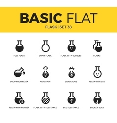 Basic set of flask icons vector image