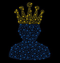 Bright mesh 2d king admin with light spots vector