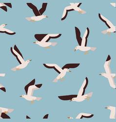 cartoon colorful flight marine bird seamless vector image