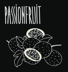 Chalkboard ripe passion fruit vector