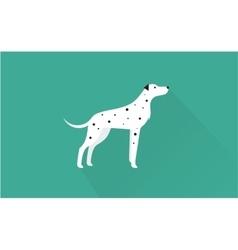 dalmatian icon vector image