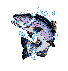 Jumping trout fish in water splashes vector