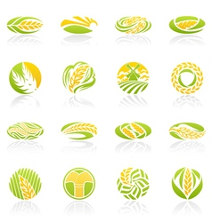 wheat and rye logo template set elements for desig vector image vector image
