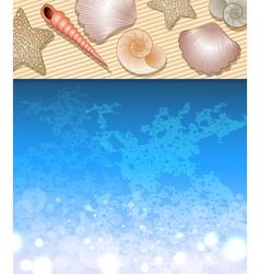 Beach with Seashells vector image