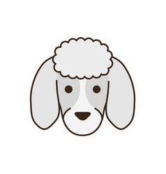Cute little dog french poodle head fill style icon vector