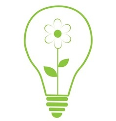 floral bulb vector image