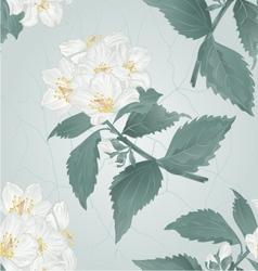 Seamless texture twig spring flower jasmine vector image