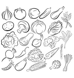 Set vegetables collection black and white vector