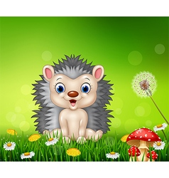Cartoon hedgehog sitting on grass background vector