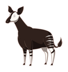 cartoon smiling okapi vector image