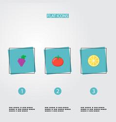 set of fruit icons flat style symbols with tomato vector image