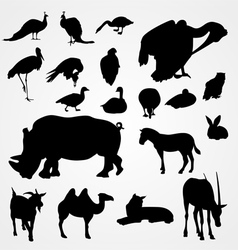 Set of silhouettes of animals on zoo vector