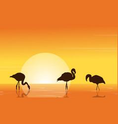 At sunset flamingo on lake scene vector