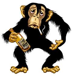 cartoon drunk chimp vector image