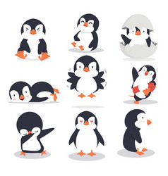 cute little penguin different poses set vector image