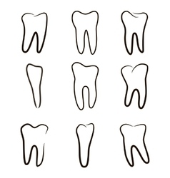 Human teeth icons set isolated on white background vector