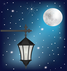 vintage street lamp at night vector image