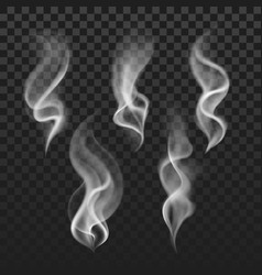Transparent steam cigarette smoke waves fog vector