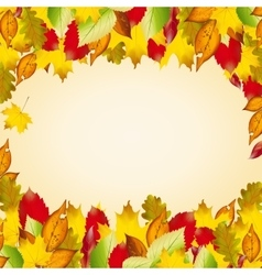 Autumn colorful leaves Fall background vector