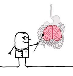 Cartoon doctor explaining that bowel is like vector