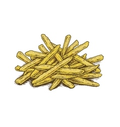 Colorful vintage style hand drawn fried potatoes vector