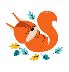 Cute red squirrel with bushy tail sleeping in vector