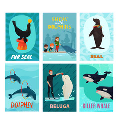 Dolphinarium show cards set vector