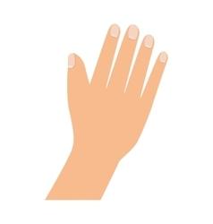 Hand palm finger vector