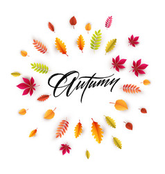 hello autumn different colored autumn leaves vector image