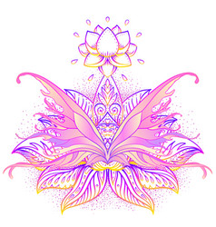 rainbow colors butterfly over sacred geometry sign vector image