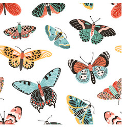 tropical butterflies and moths with wings seamless vector image